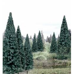13 pinos. WOODLAND TR1588