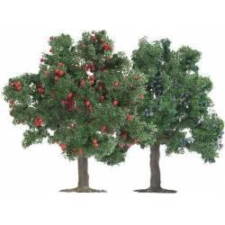 2 árboles frutales 75 mm.