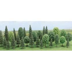 30 árboles variados.