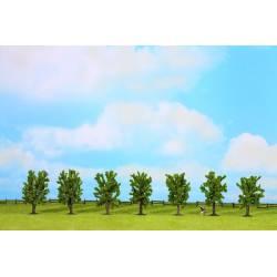 Deciduos trees. NOCH 25088