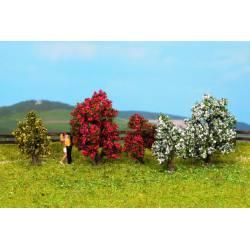 Bushes, in blossom. NOCH 25420