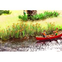 Water lilies.NOCH 14140