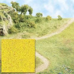Hojarasca amarilla.