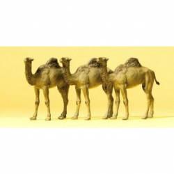 Camellos. PREISER 20397