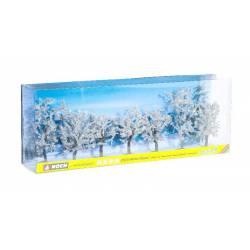 Árboles en invierno. NOCH 25075