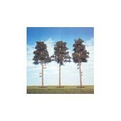 Tres pinos silvestres de 150 mm. ANESTE 561