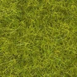 Wild grass XL, meadow.