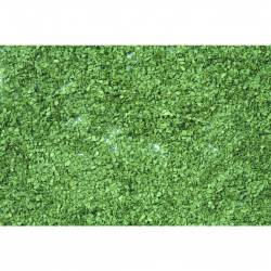 Follaje, verde medio. NOCH 07154