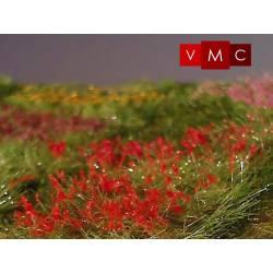 Flores, amapolas. VMC 72005