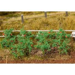 18 tomato plants. FALLER 181259