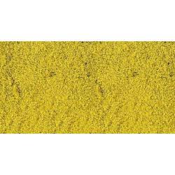Flores, amarillas. HEKI 1589