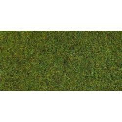Static grass.