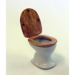 Toilet bowl.