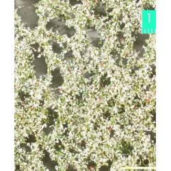 Hojas de manzano en primavera. SILHOUETTE 926-21S