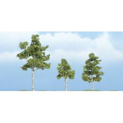 Paper birch. WOODLAND SCENICS TR1605