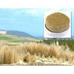 Hierba seca alta de tipo paja o junco.