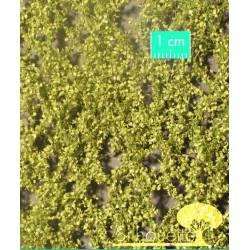 Hojas de abedul, primavera. SILHOUETTE 910-21