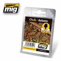 Oak, autumn. AMIG 8401