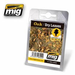 Oak, dry leaves.