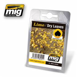 Lime, dry leaves. AMIG 8405