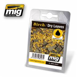 Birch, dry leaves. AMIG 8407