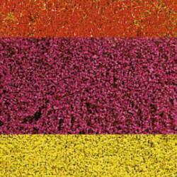 Flores, variadas. HEKI 1585