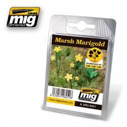 Plants: Marsh Marigold. AMIG 8451