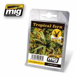 Plantas: Helechos tropicales.