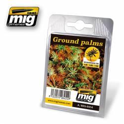 Plants: Ground palms.