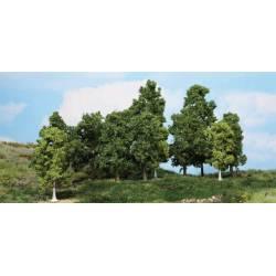 15 árboles frondosos. HEKI 1991