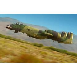 "A-10 ""Thunderbolt"" II."