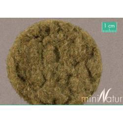Short hay. SILHOUTTE 002-29