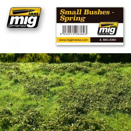Arbustos, primavera. AMIG 8360