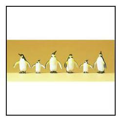Pingüinos.