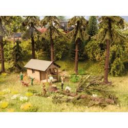 Trabajos forestales. NOCH 14213319