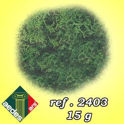Moss. AEDES 2403