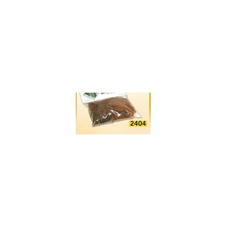 Musgo marrón. AEDES 2404