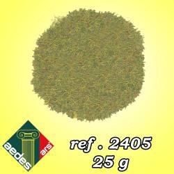 Grass. AEDES 2405