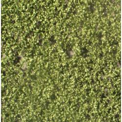 Birch foliage. SILHOUETTE 910-22S
