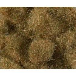 Long hay.