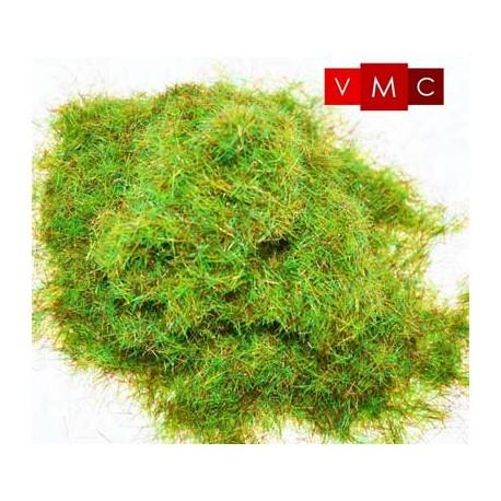 Static grass, cheshire field. VMC 70218