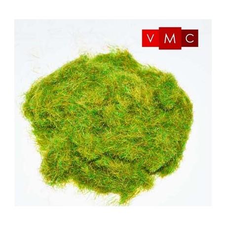 Static grass, pasture. VMC 70219