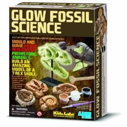 Kit de excavación Fósiles.