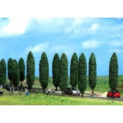10 poplars.