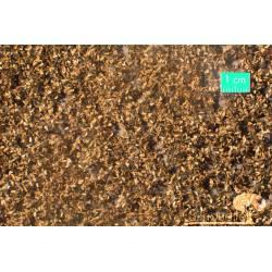 Hojas de roble, finales otoño. SILHOUETTE 980-24S