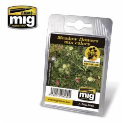 Plantas: flores de pradera. AMIG 8460