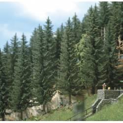 Spruce trees. BUSCH 6134