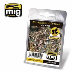 European mixture: dry leaves. AMIG 8410