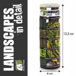 Scenic mosses. LANDSCAPES 102
