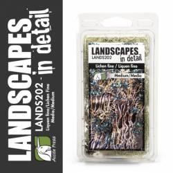 Lichen Fine - Medium. LANDSCAPES 202